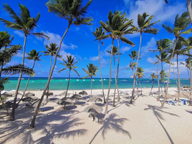 TrueCost Caribbean Paradise