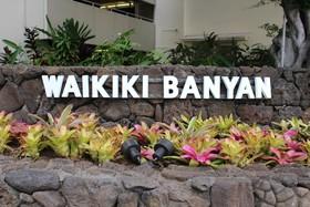Waikiki Banyan by CIMY Hawaii